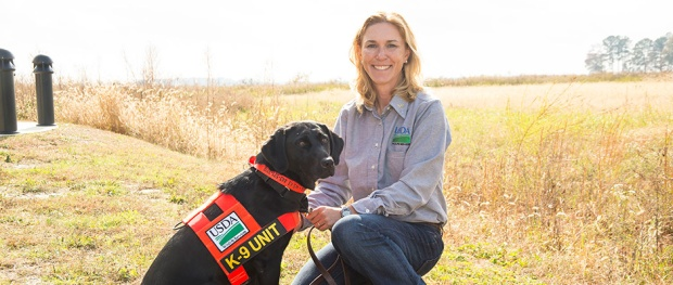 Sci-Mgmt-Detection-Dogs-Eradicate-Nutria-Anson-Eaglin-USDA-APHIS-940