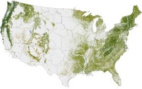 Vegetation Map of Maryland | The Natural History Log
