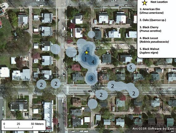 chickadee-map2-ArcGIS-570x375