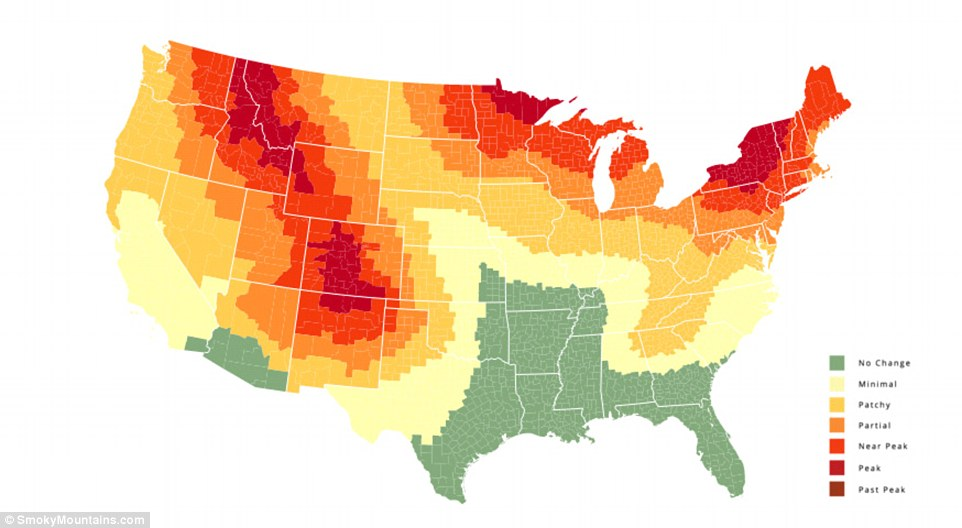 Fall Foliage Map  The Natural History Log