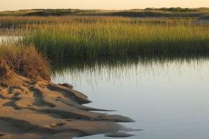 salt-marshes Hatches Harbor USGS